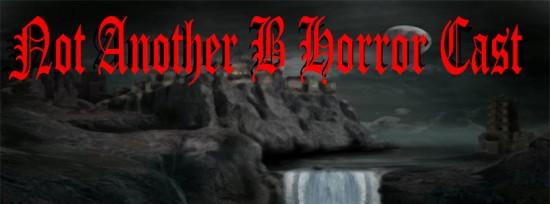 notanotherBhorror_Wide
